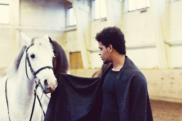 the man who loves horses